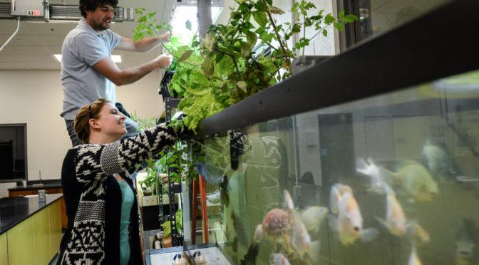 Ed McMahon fish tank